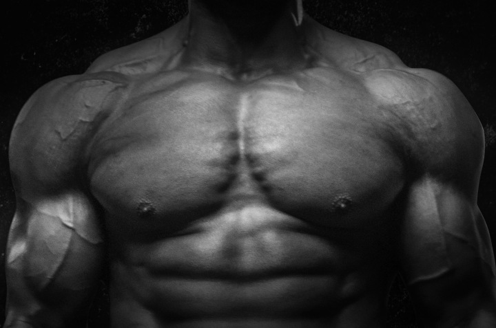 Muscle Study: The PectoralMuscle